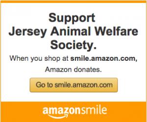 Amazon Smile for JAWS